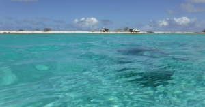 Snorkeling and diving on Bonaire.
