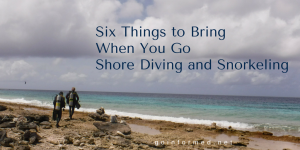 What you should bring on every shore dive and snorkel.